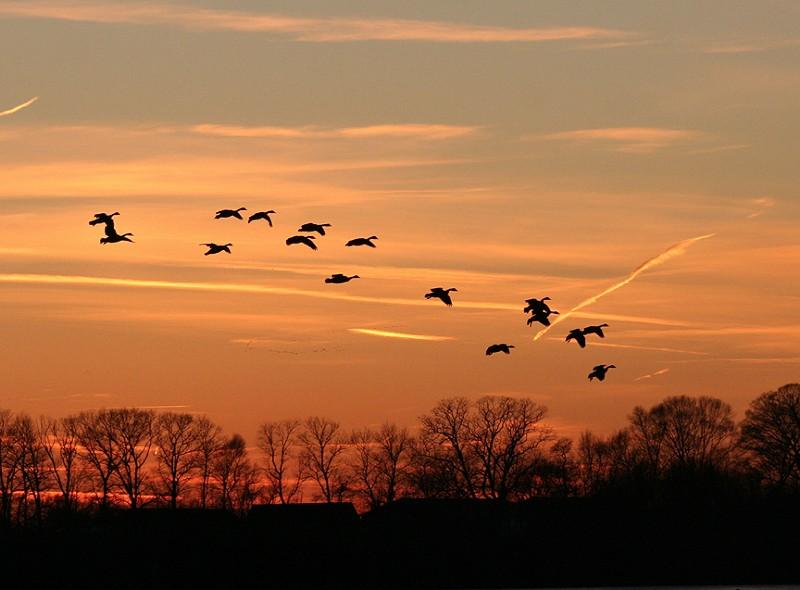 5442 lg sunset - Photo Gallery