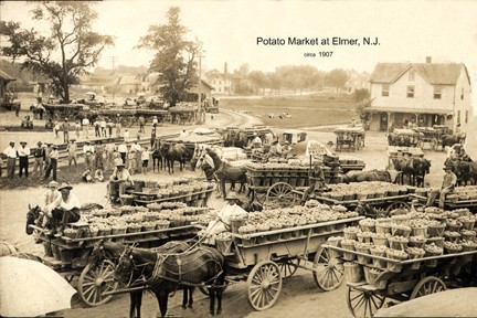 elmer potatoe market circa1907 - Photo Gallery
