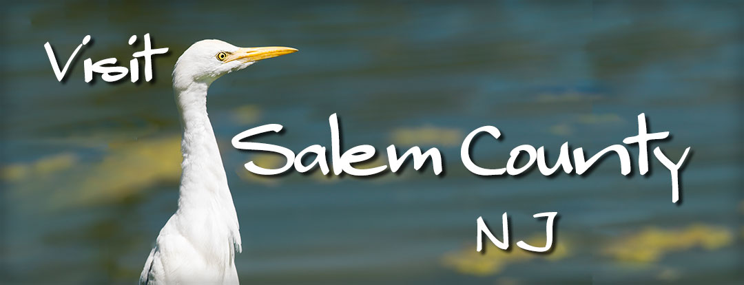 Visit Salem County banner with egret