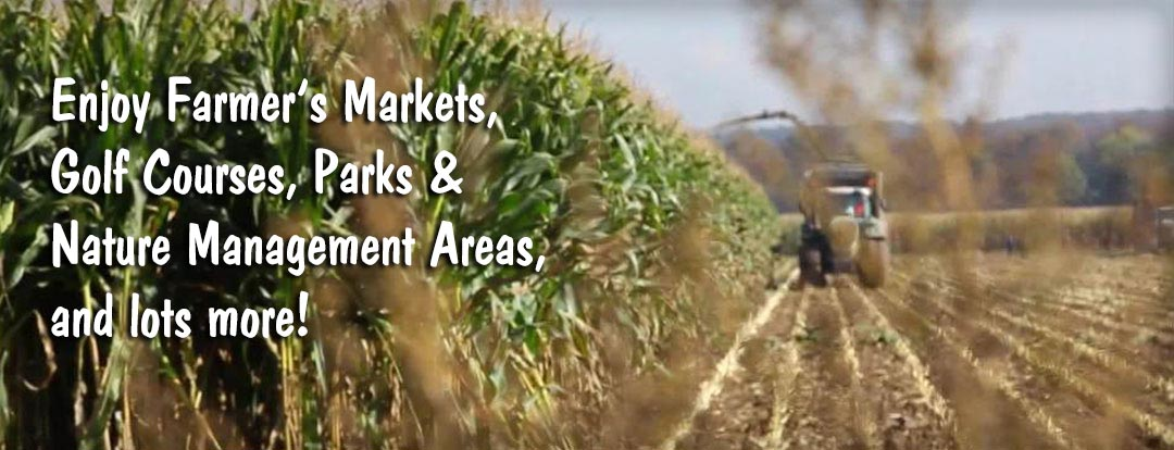 Banner Ad for Farmers Markets and Other Outdoor Activities