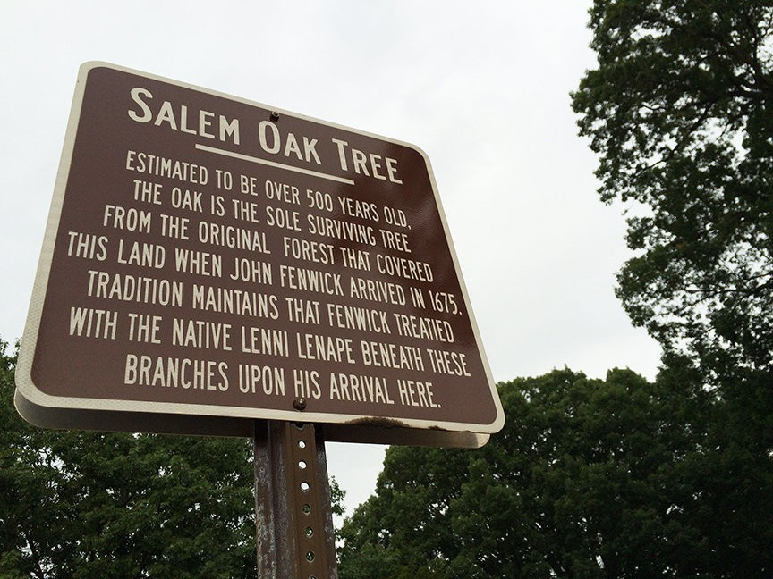 salem oak tree sign